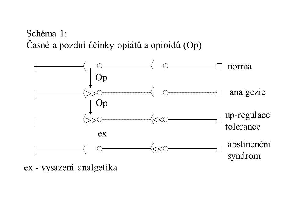 Schéma 1: Časné a pozdní účinky opiátů a opioidů (Op) norma. Op.  analgezie. Op. up-regulace.