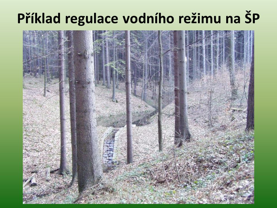 Příklad regulace vodního režimu na ŠP