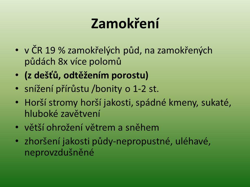 Zamokření v ČR 19 % zamokřelých půd, na zamokřených půdách 8x více polomů. (z dešťů, odtěžením porostu)