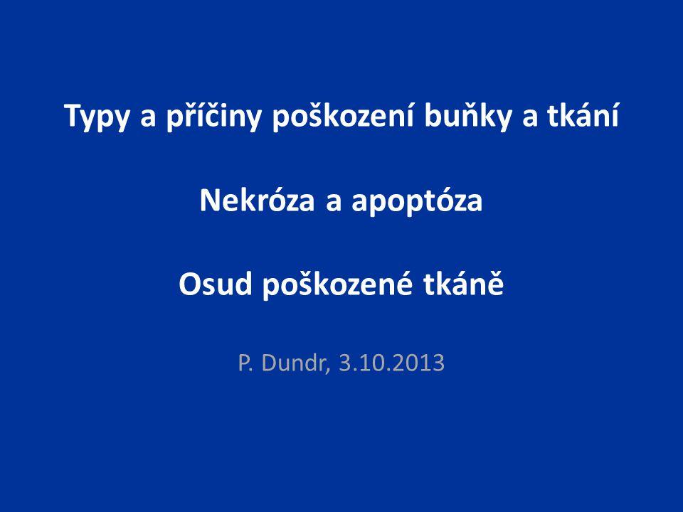 Typy a příčiny poškození buňky a tkání Nekróza a apoptóza Osud poškozené tkáně P. Dundr, 3.10.2013