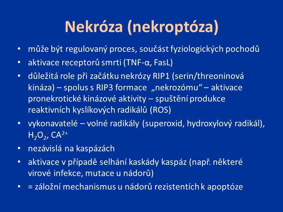 Nekróza (nekroptóza) může být regulovaný proces, součást fyziologických pochodů. aktivace receptorů smrti (TNF-α, FasL)