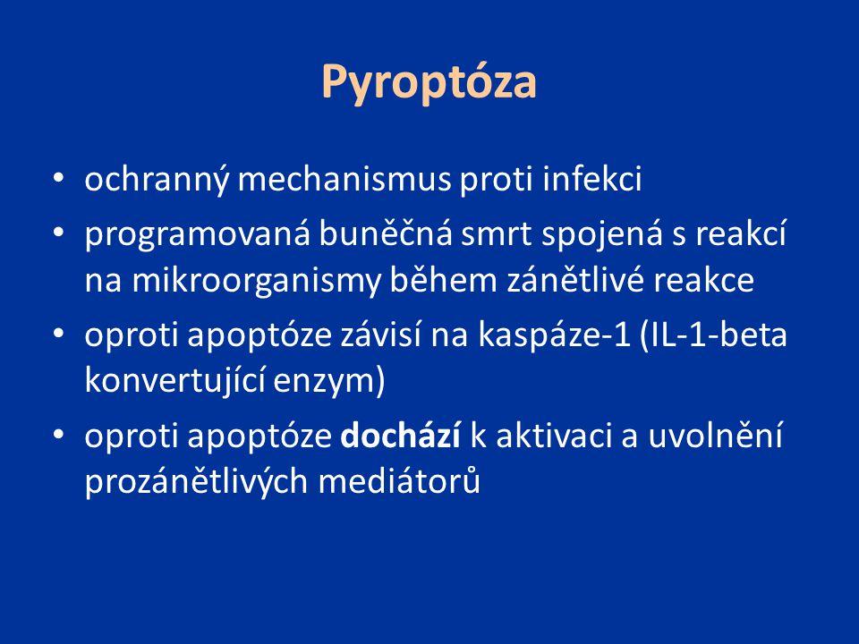 Pyroptóza ochranný mechanismus proti infekci