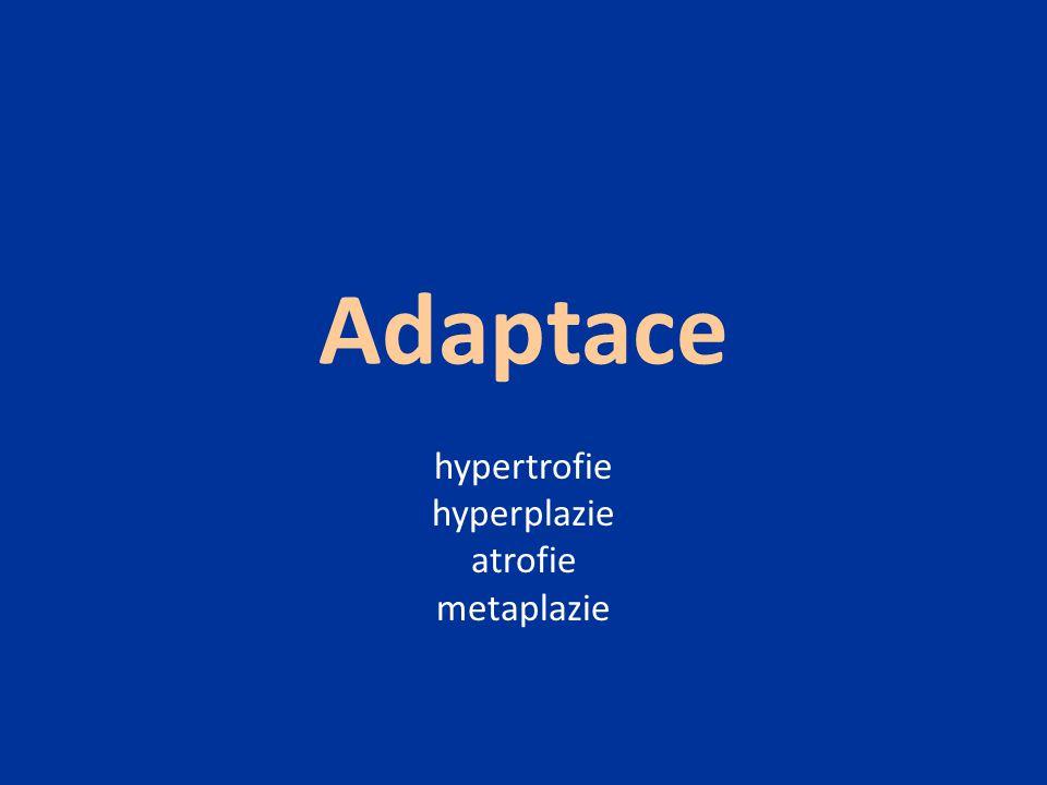 hypertrofie hyperplazie atrofie metaplazie