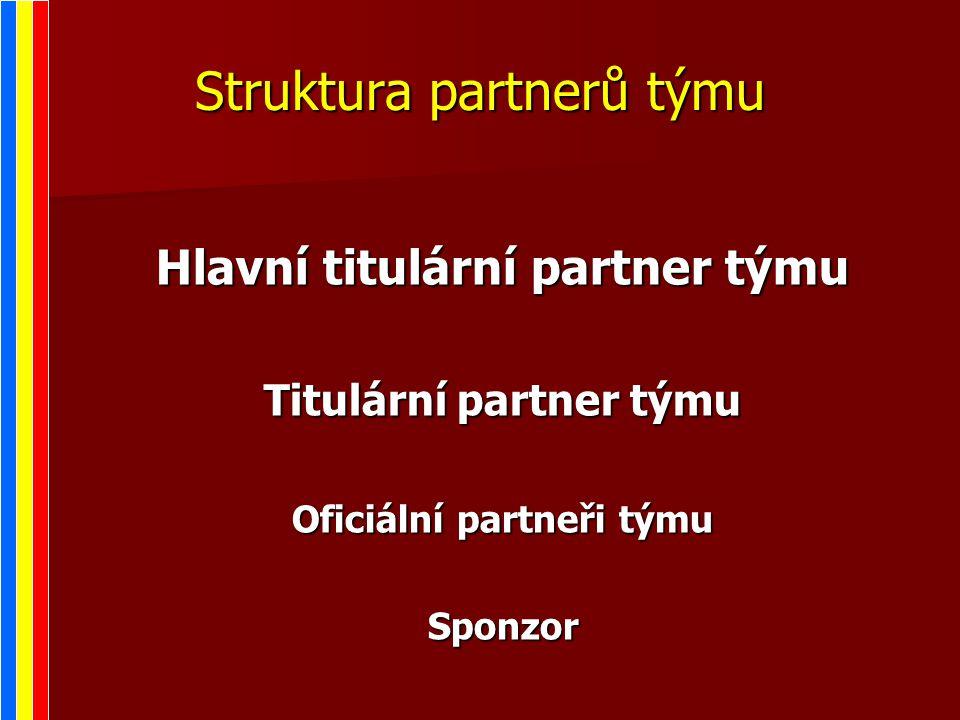 Struktura partnerů týmu