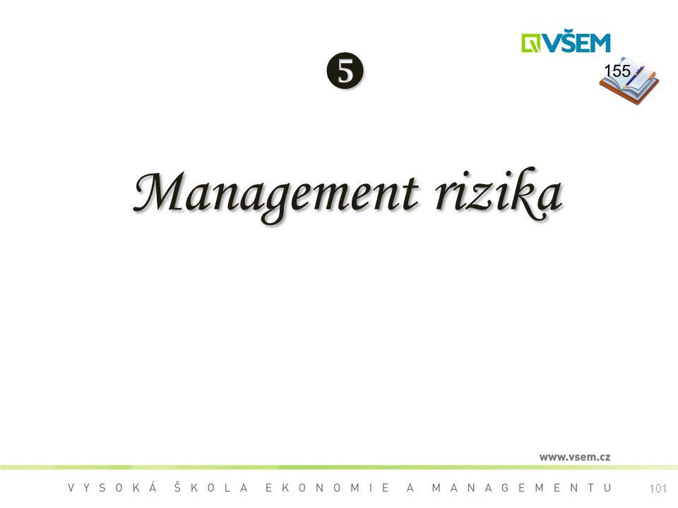  155 Management rizika 101