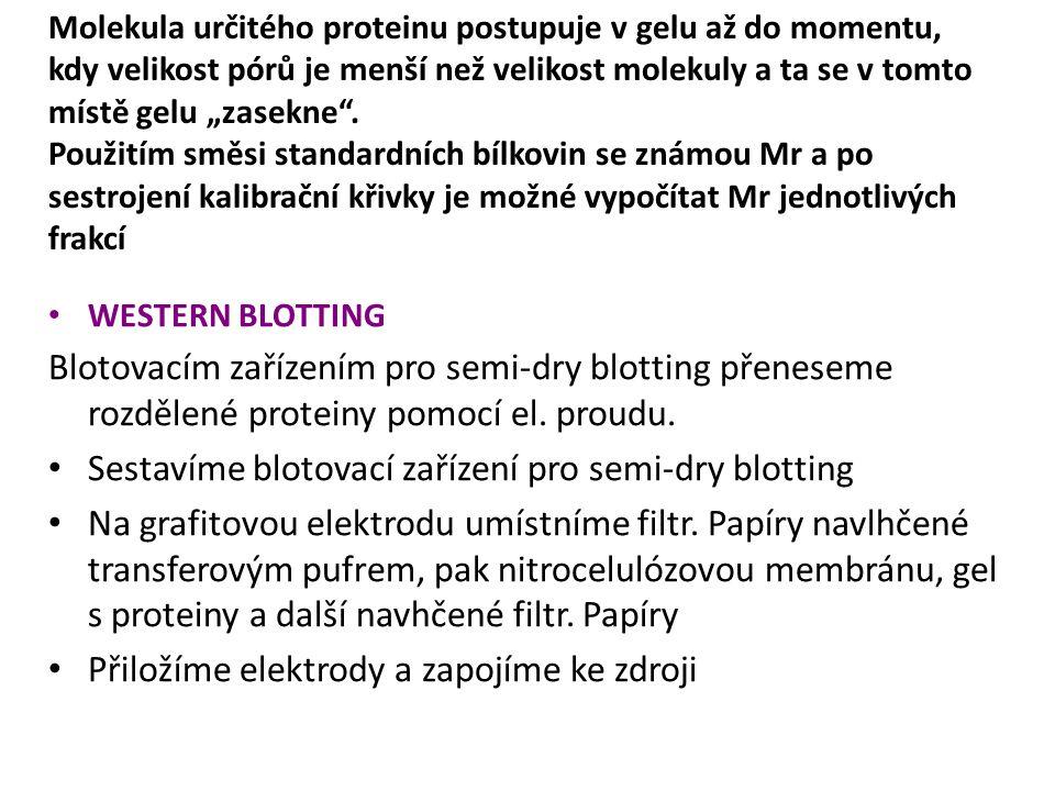 Sestavíme blotovací zařízení pro semi-dry blotting
