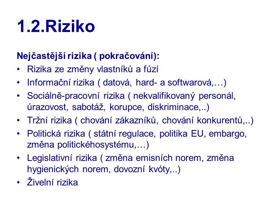 1.2.Riziko Nejčastější rizika ( pokračování):