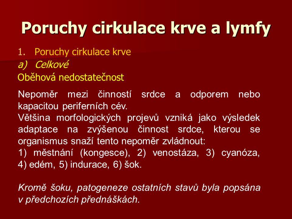 Poruchy cirkulace krve a lymfy