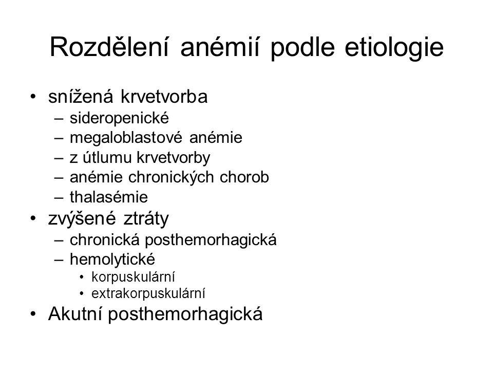 Rozdělení anémií podle etiologie