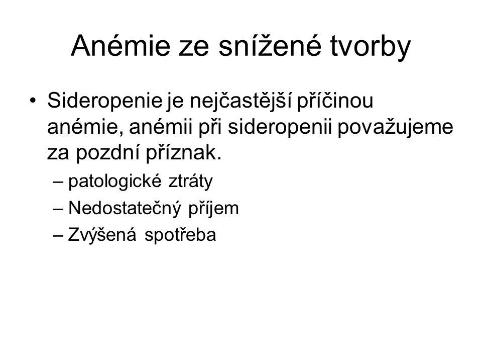 Anémie ze snížené tvorby