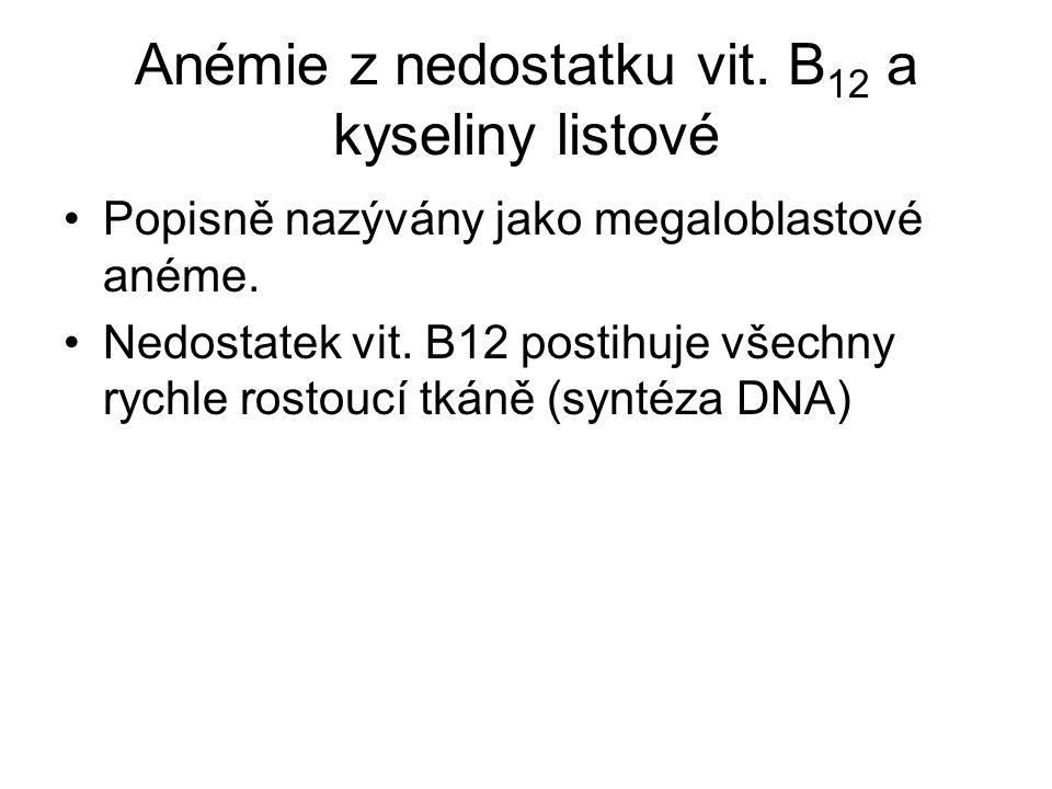 Anémie z nedostatku vit. B12 a kyseliny listové