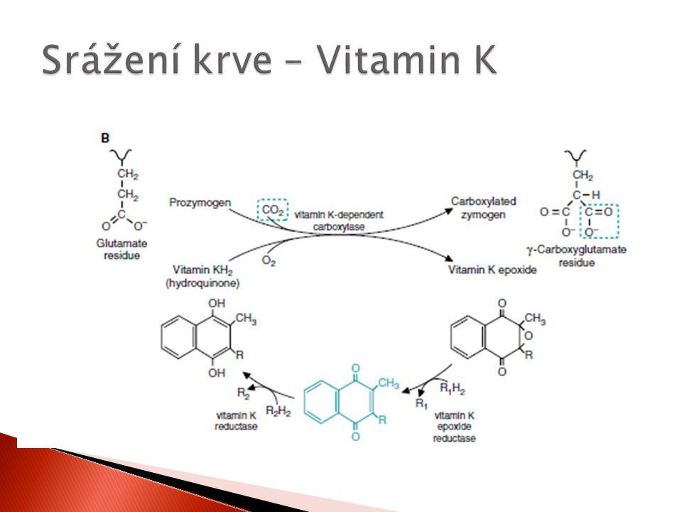 Srážení krve – Vitamin K