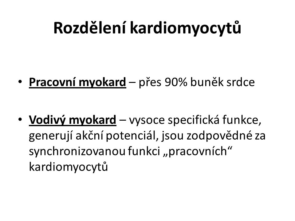 Rozdělení kardiomyocytů