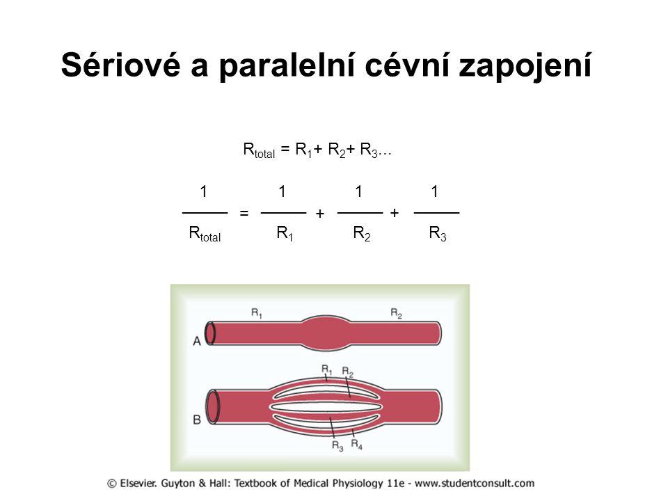 Sériové a paralelní cévní zapojení
