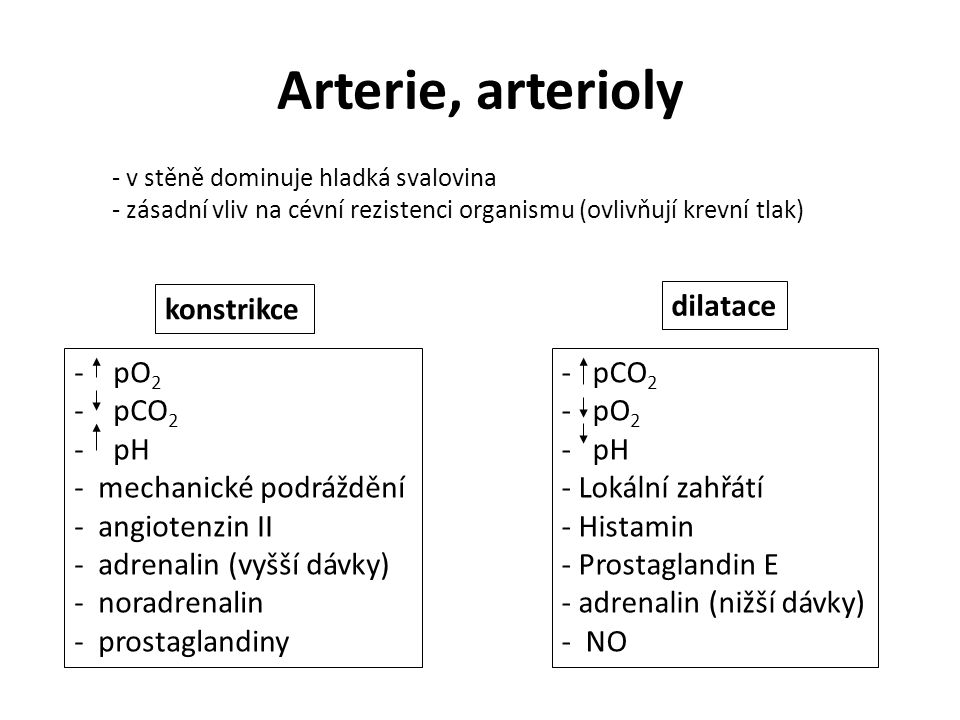 Arterie, arterioly konstrikce dilatace pO2 pCO2 pH