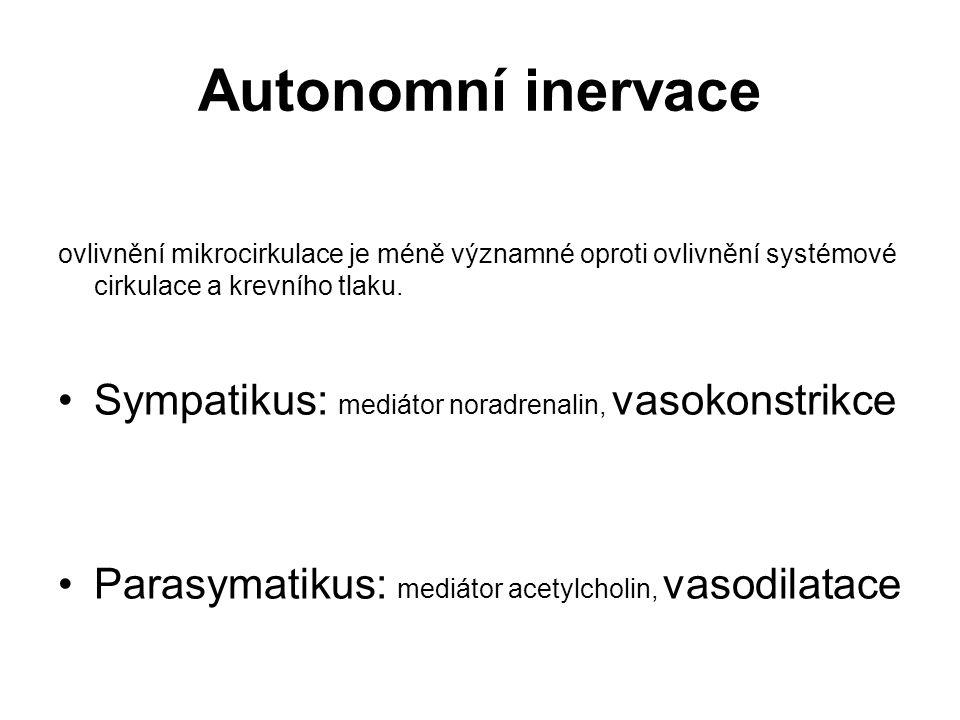 Autonomní inervace Sympatikus: mediátor noradrenalin, vasokonstrikce