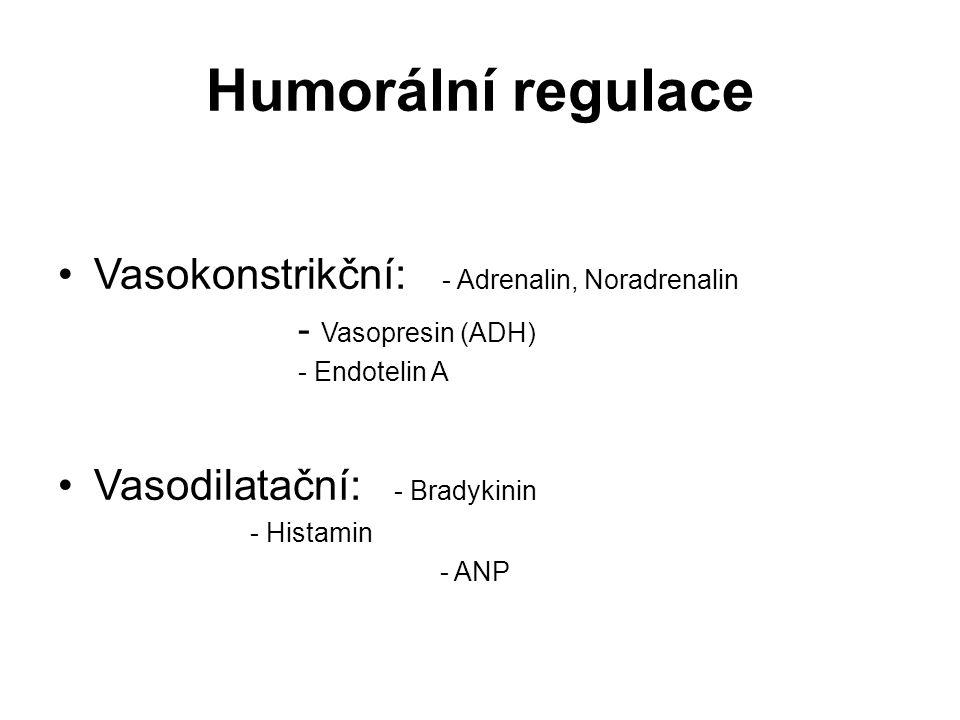 Humorální regulace Vasokonstrikční: - Adrenalin, Noradrenalin