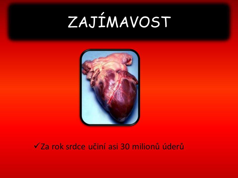 ZAJÍMAVOST Za rok srdce učiní asi 30 milionů úderů