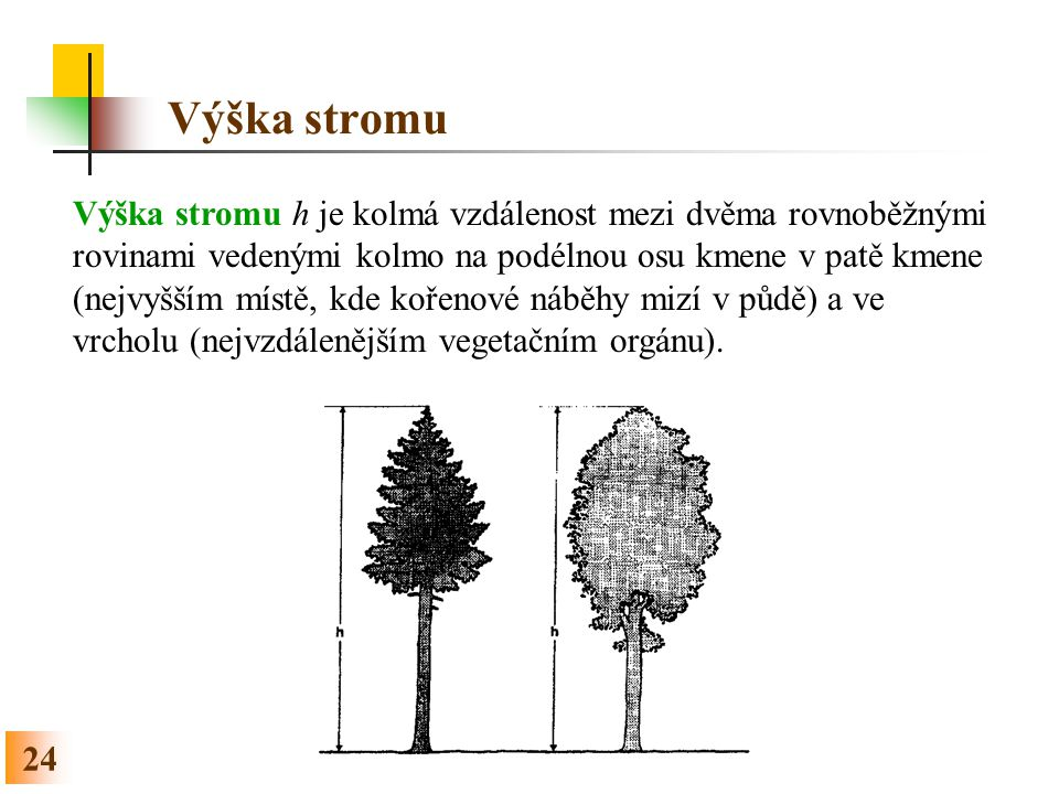 Výška stromu
