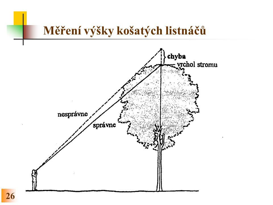 Měření výšky košatých listnáčů