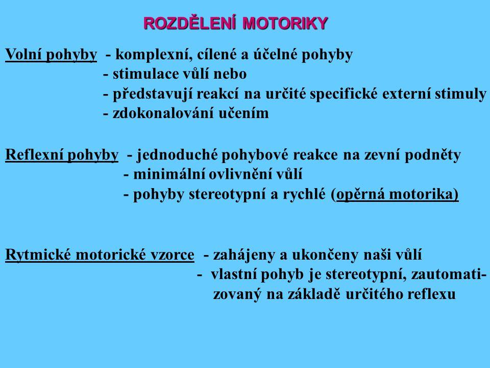 ROZDĚLENÍ MOTORIKY Volní pohyby - komplexní, cílené a účelné pohyby. - stimulace vůlí nebo.