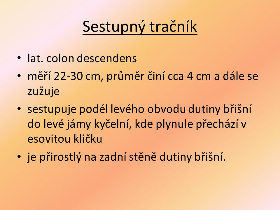 Sestupný tračník lat. colon descendens