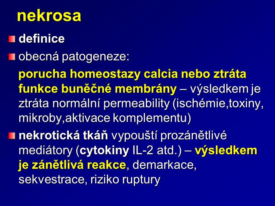 nekrosa definice obecná patogeneze: