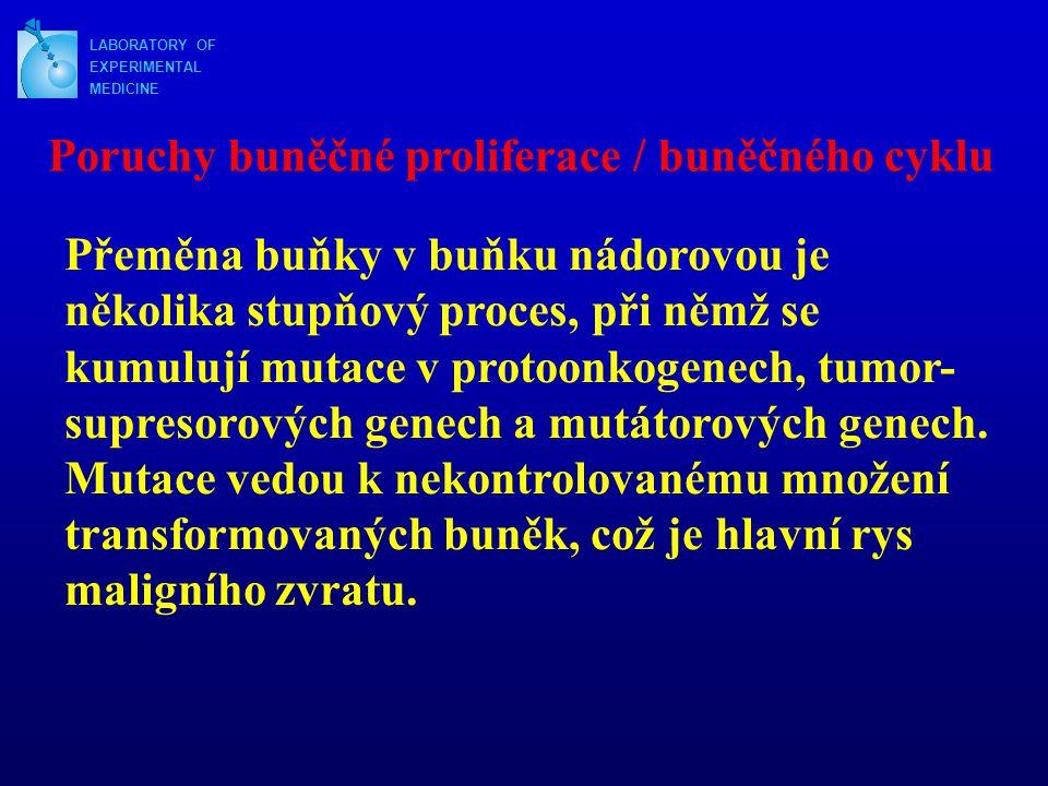 Poruchy buněčné proliferace / buněčného cyklu