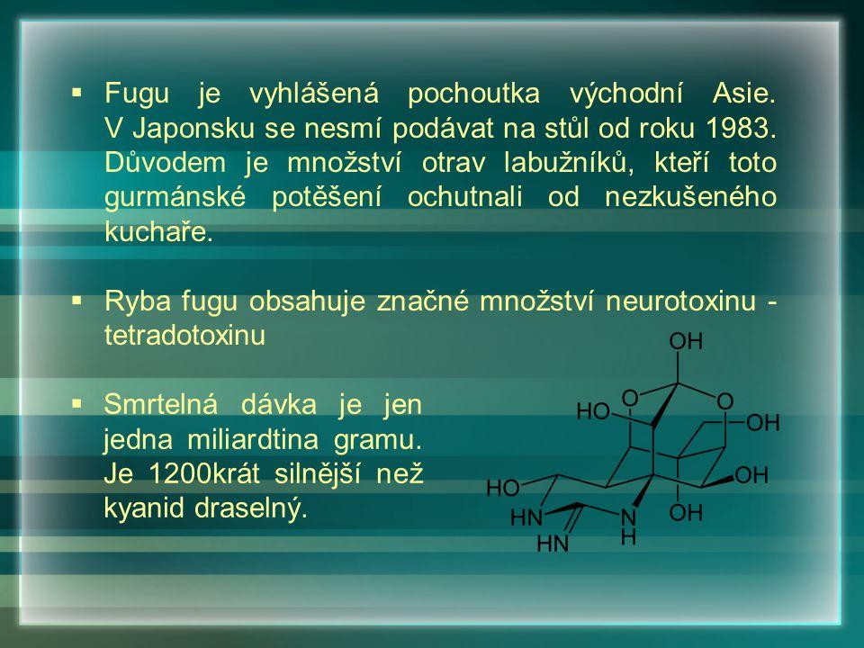 Fugu je vyhlášená pochoutka východní Asie