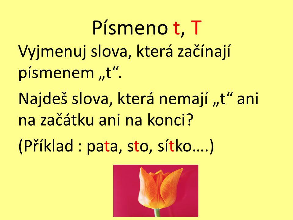 """Písmeno t, T Vyjmenuj slova, která začínají písmenem """"t ."""