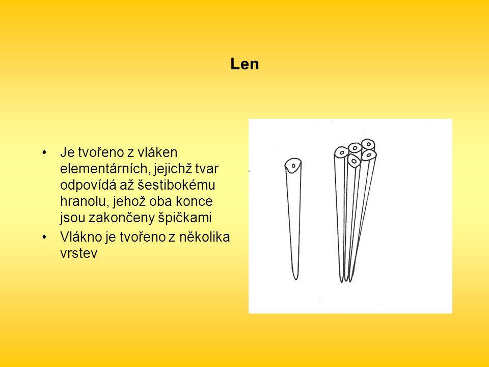 Len Je tvořeno z vláken elementárních, jejichž tvar odpovídá až šestibokému hranolu, jehož oba konce jsou zakončeny špičkami.