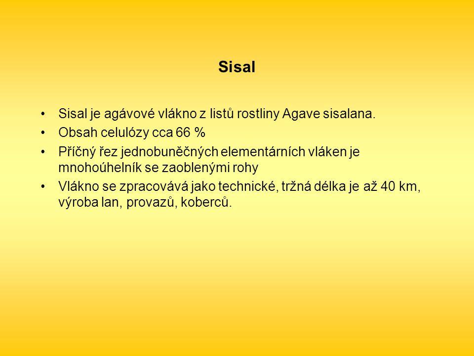 Sisal Sisal je agávové vlákno z listů rostliny Agave sisalana.