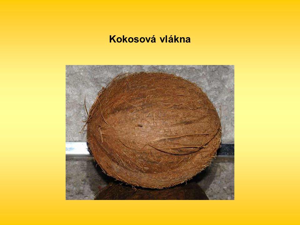 Kokosová vlákna