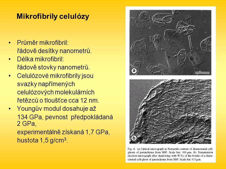 Mikrofibrily celulózy