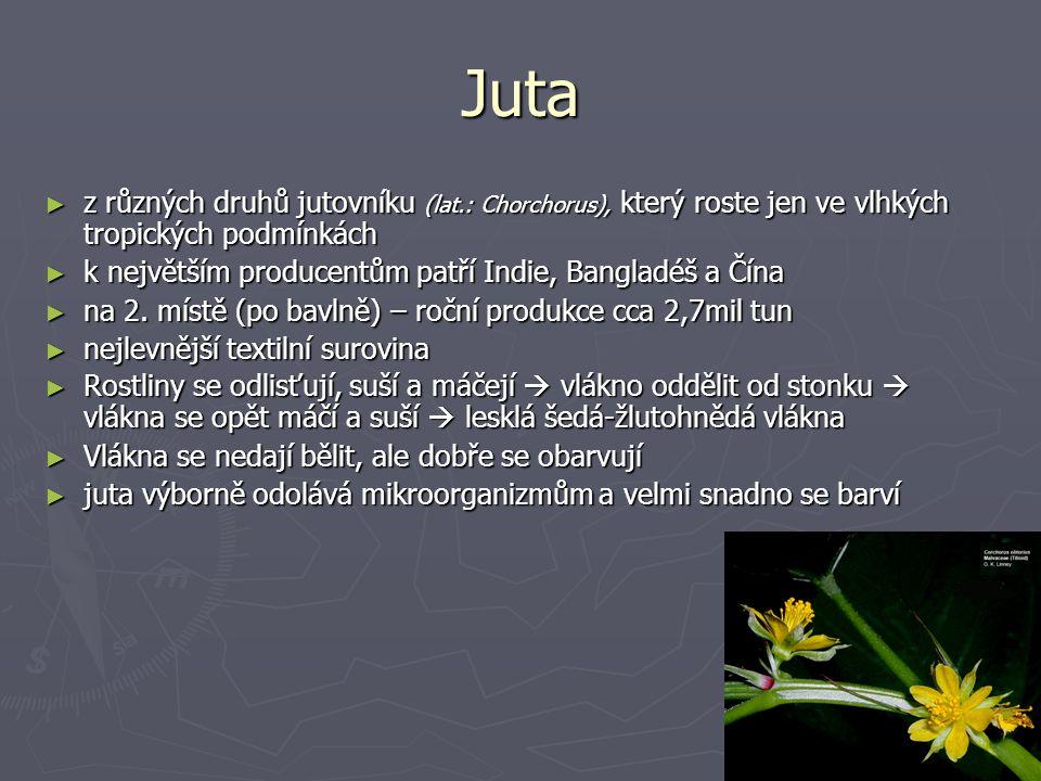 Juta z různých druhů jutovníku (lat.: Chorchorus), který roste jen ve vlhkých tropických podmínkách.