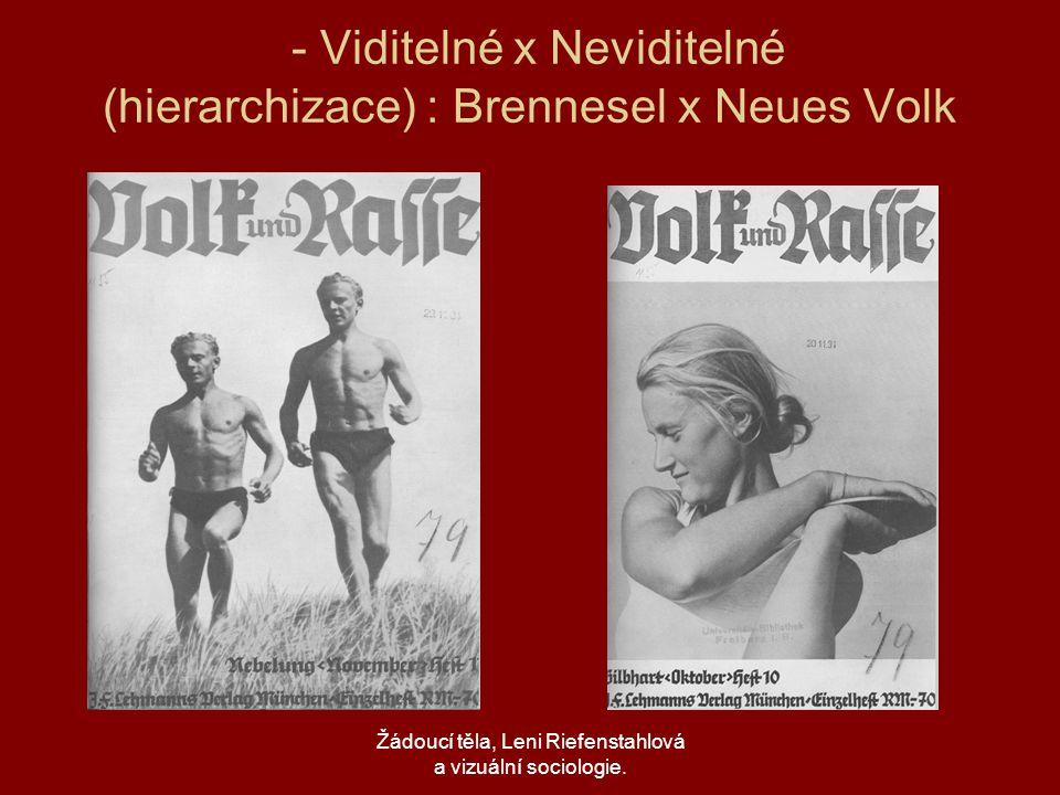 - Viditelné x Neviditelné (hierarchizace) : Brennesel x Neues Volk