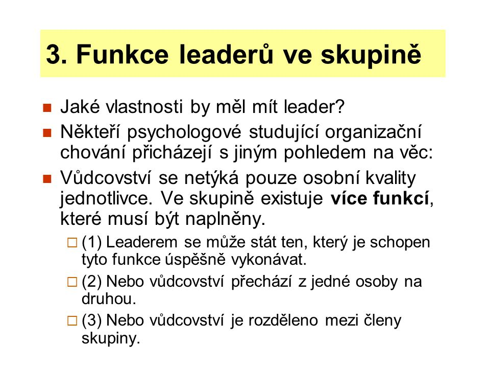 3. Funkce leaderů ve skupině