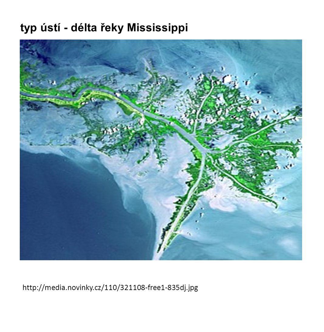 typ ústí - délta řeky Mississippi
