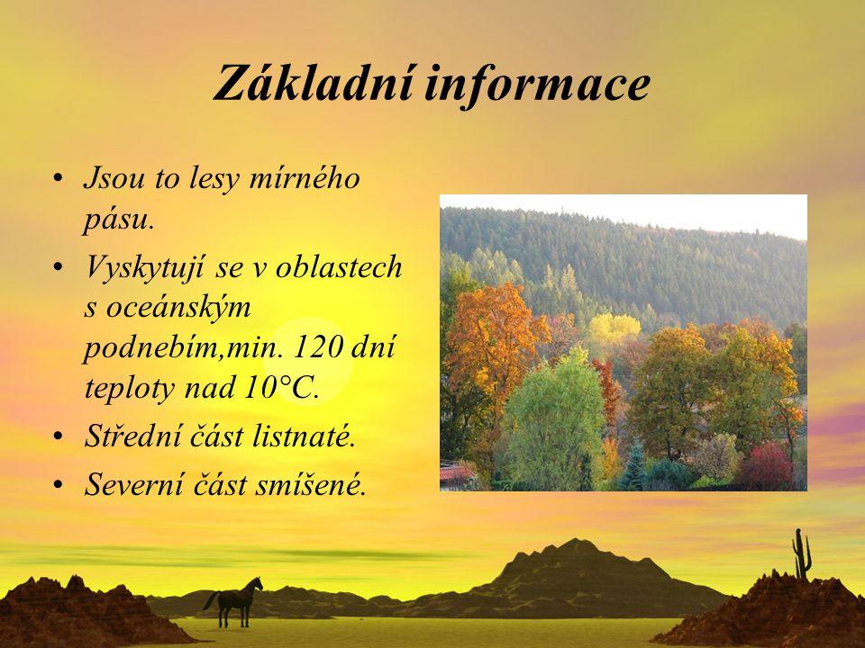 Základní informace Jsou to lesy mírného pásu.
