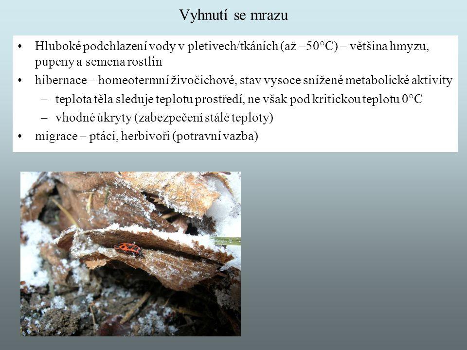 Vyhnutí se mrazu Hluboké podchlazení vody v pletivech/tkáních (až –50°C) – většina hmyzu, pupeny a semena rostlin.