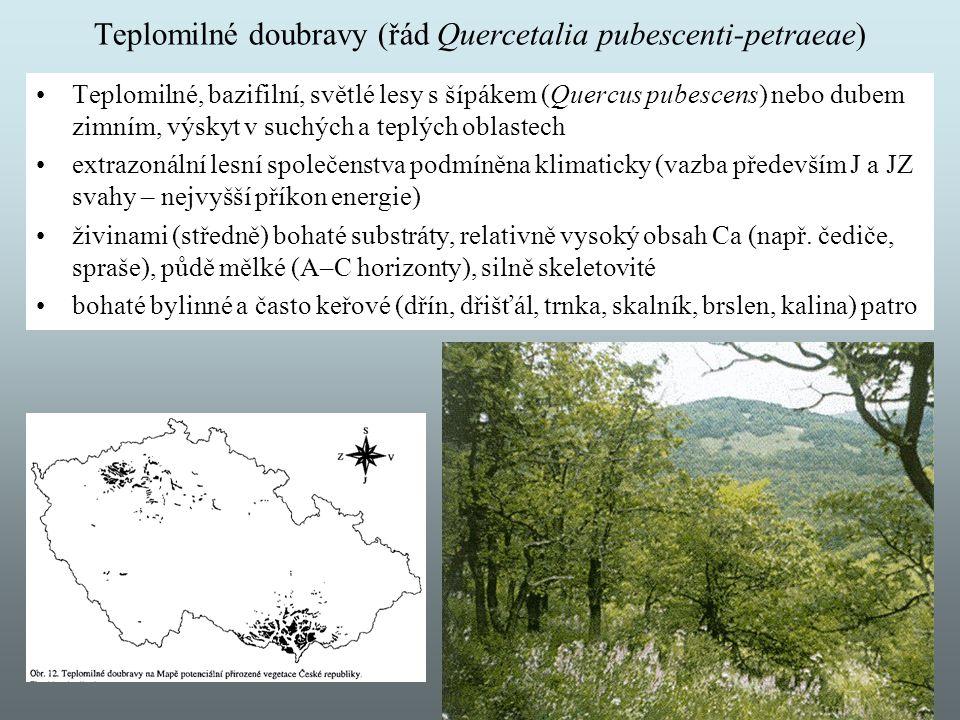 Teplomilné doubravy (řád Quercetalia pubescenti-petraeae)