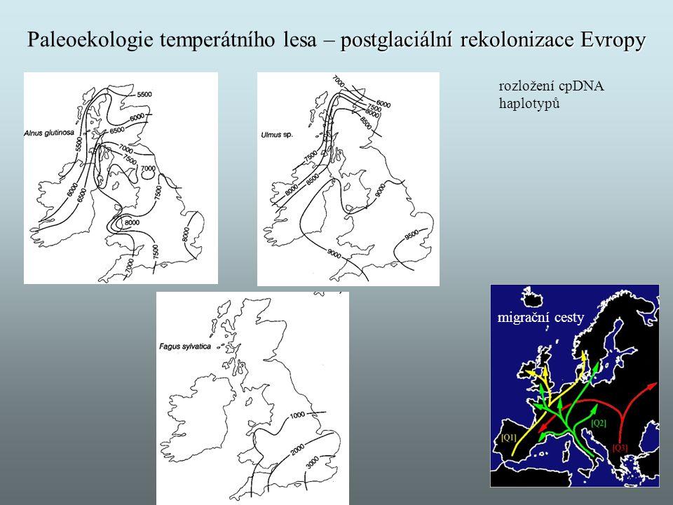Paleoekologie temperátního lesa – postglaciální rekolonizace Evropy