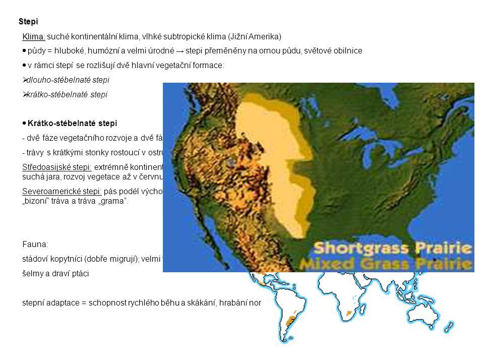 Stepi Klima: suché kontinentální klima, vlhké subtropické klima (Jižní Amerika)