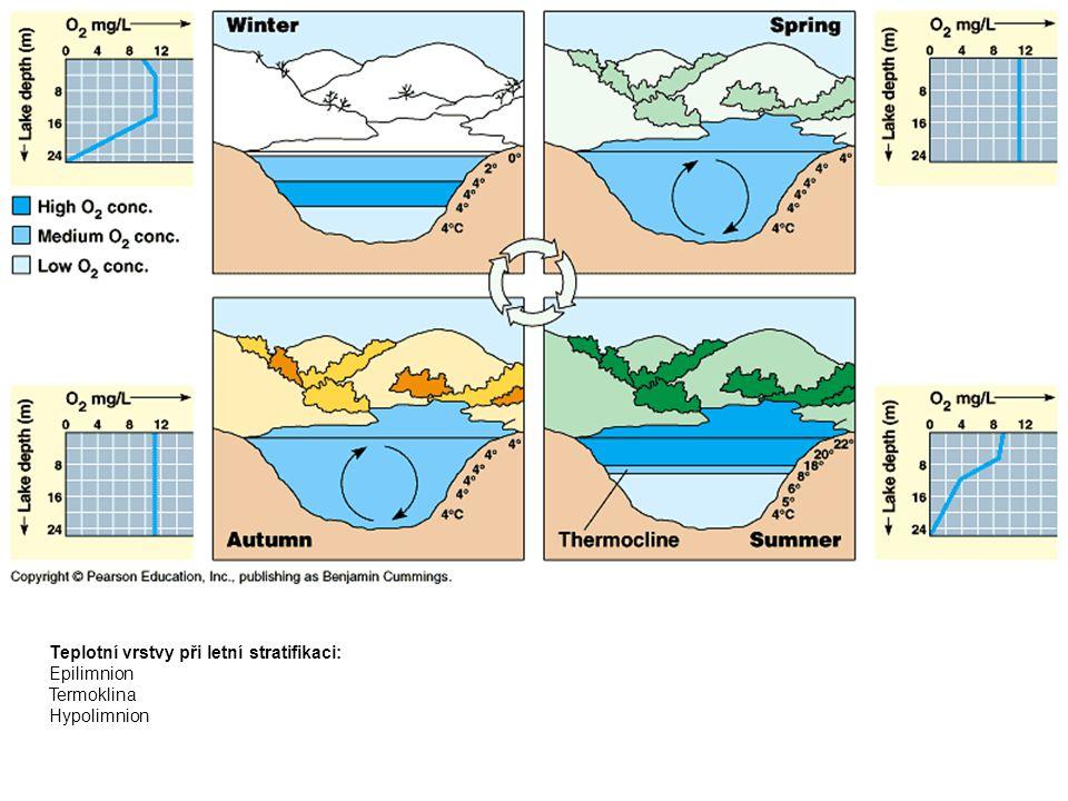 Teplotní vrstvy při letní stratifikaci: