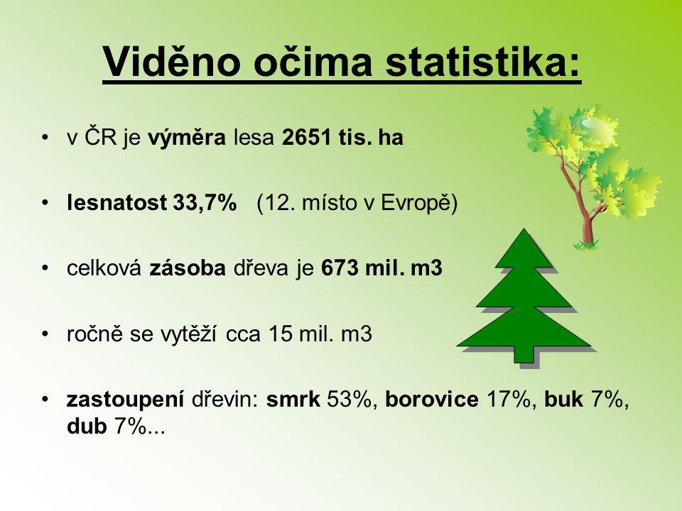 Viděno očima statistika: