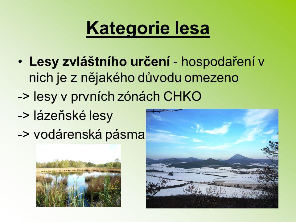 Kategorie lesa Lesy zvláštního určení - hospodaření v nich je z nějakého důvodu omezeno. -> lesy v prvních zónách CHKO.