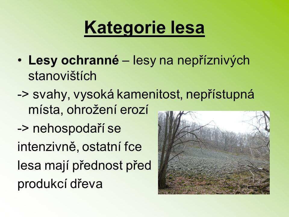 Kategorie lesa Lesy ochranné – lesy na nepříznivých stanovištích