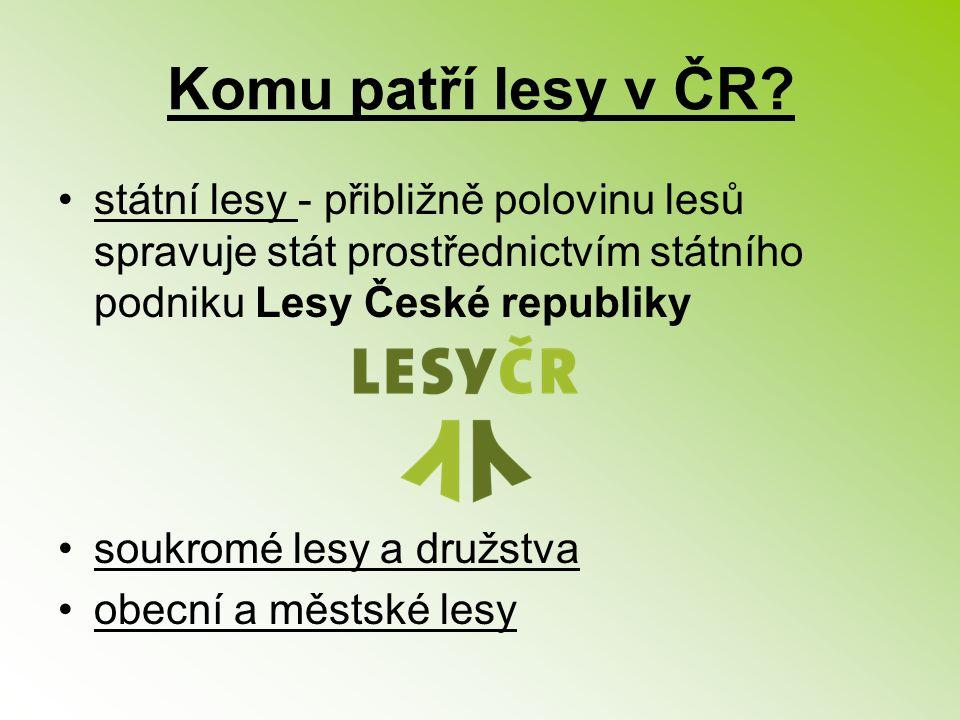 Komu patří lesy v ČR státní lesy - přibližně polovinu lesů spravuje stát prostřednictvím státního podniku Lesy České republiky.