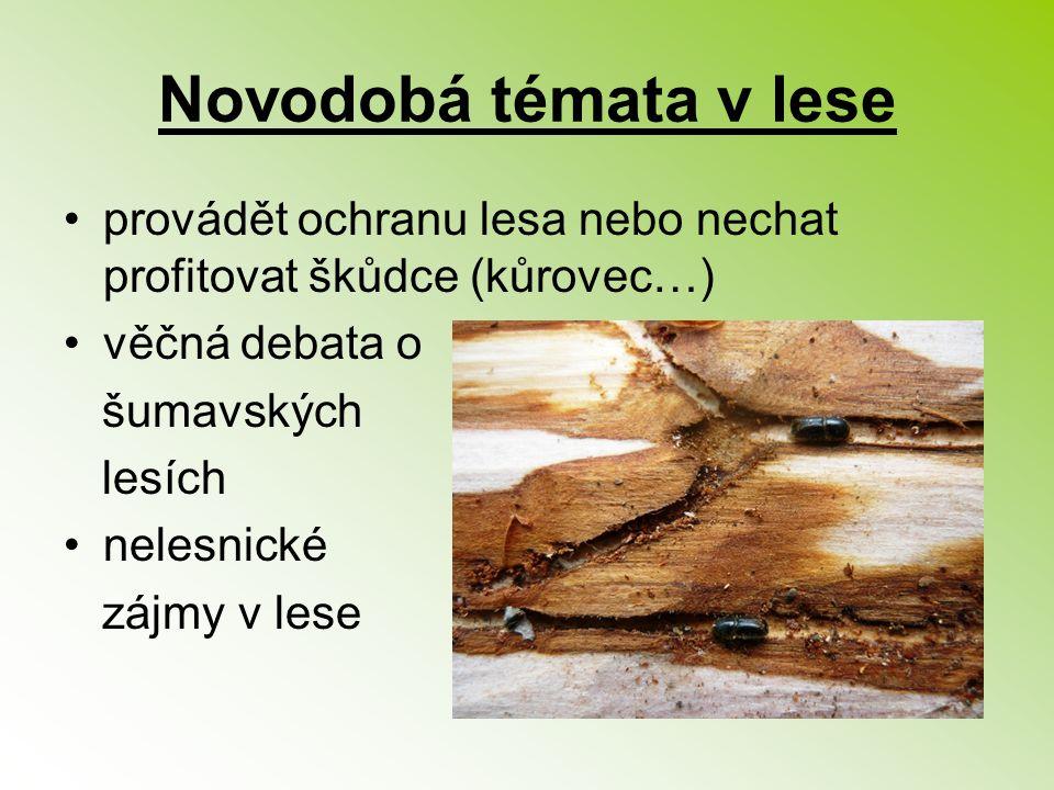 Novodobá témata v lese provádět ochranu lesa nebo nechat profitovat škůdce (kůrovec…) věčná debata o.