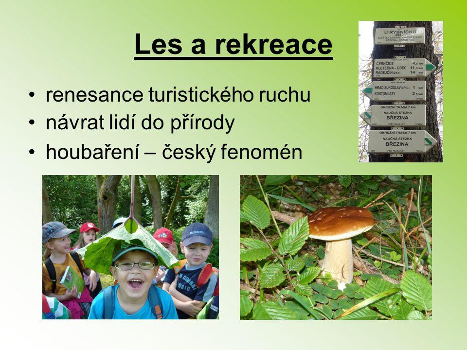 Les a rekreace renesance turistického ruchu návrat lidí do přírody